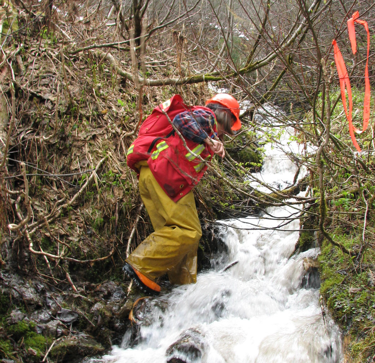 Riparian Assessment (BC Government)
